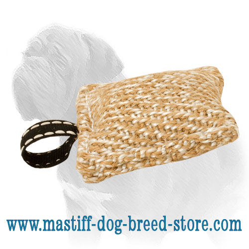 Small Mastiff Dog Biting Tug of Jute Material
