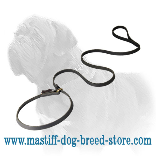 Amazing Combo Mastiff Dog Leash and Choke Collar of Full Grain Leather