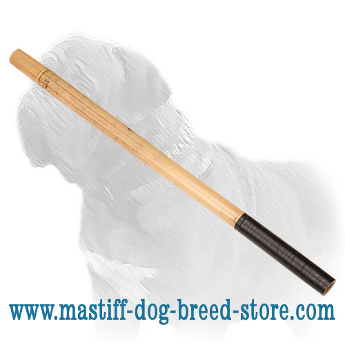 Mastiff Training Bamboo Stick with Taped Handle