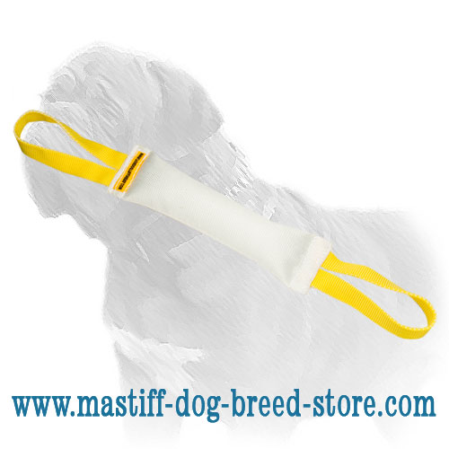 Mastiff Training Fire Hose Dog Bite Tug