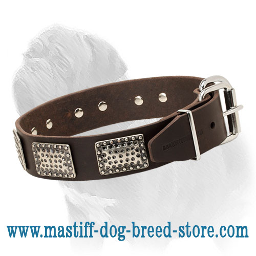 Unusual Design Mastiff Dog Collar with Steel Nickel Plated Plates