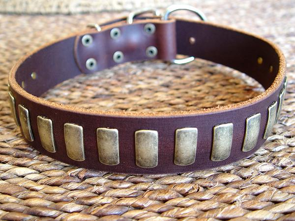 custom leather dog collar