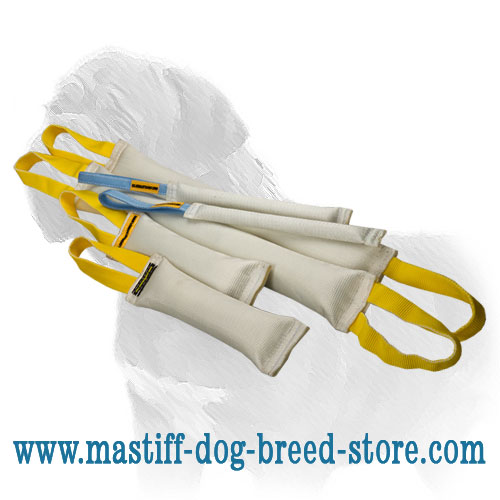 Big Mastiff Training Set of Fire Hose Bite Tags