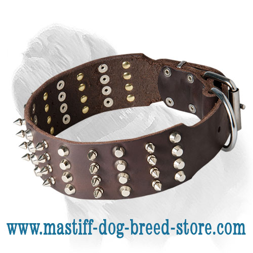 Mastiff Dog Collar Extra Wide Spikes with Studs