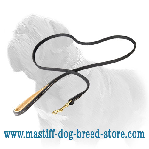 Mastiff dog leash strongly stitched with contrasting threads