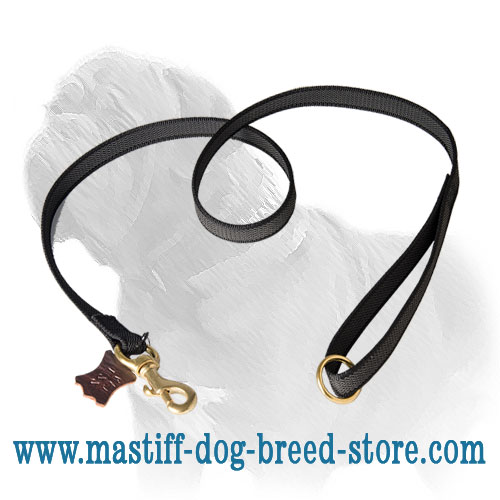 Strong Mastiff lead of nylon with brass fittings