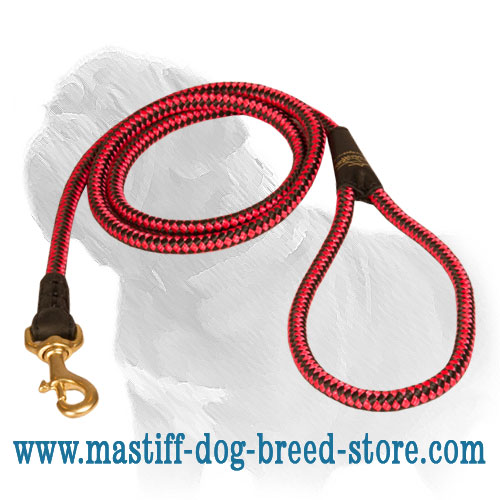 Long nylon leash with nickel-plated snap hook, cord-type
