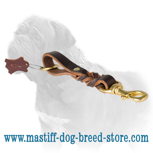 Pull Tab Leash for Mastiff breed with decorative braids