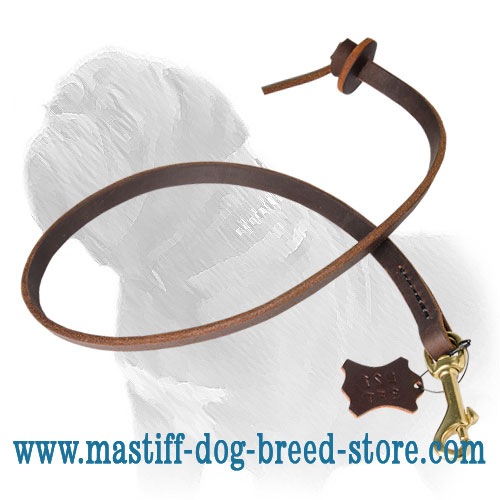 Reliable leather Mastiff leash with strong stitching