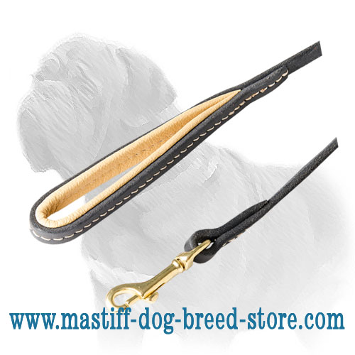Dog leash for Mastiffs of genuine leather with soft padded handle
