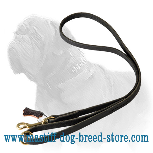 Mastiff dog leash available in black and brown
