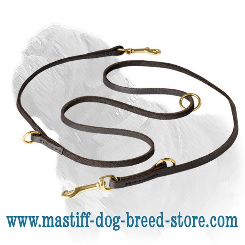Top-quality Mastiff dog leash with 2 floating rings