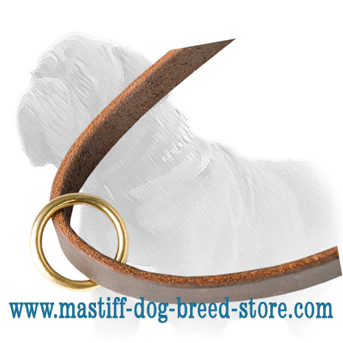 Top-quality Mastiff leash with brass O-ring and two snap hooks