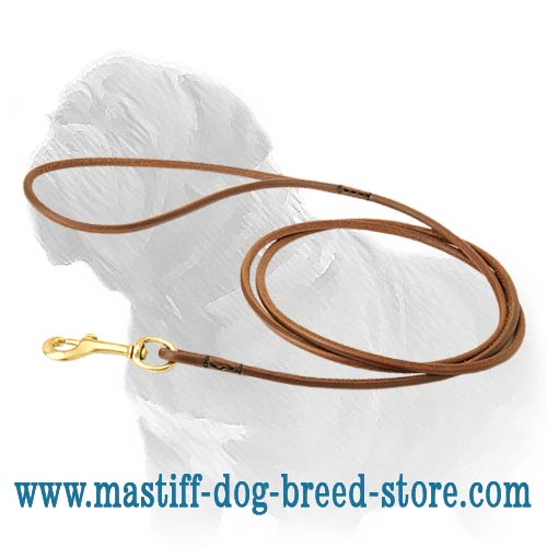 Gorgeous and reliable Mastiff tool for dog shows