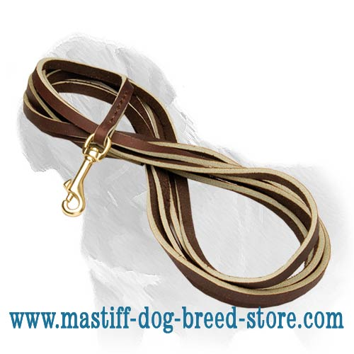 Guaranteed quality canine leash for Mastiff training
