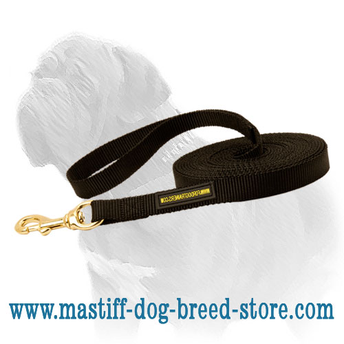 Long nylon dog lead for tracking