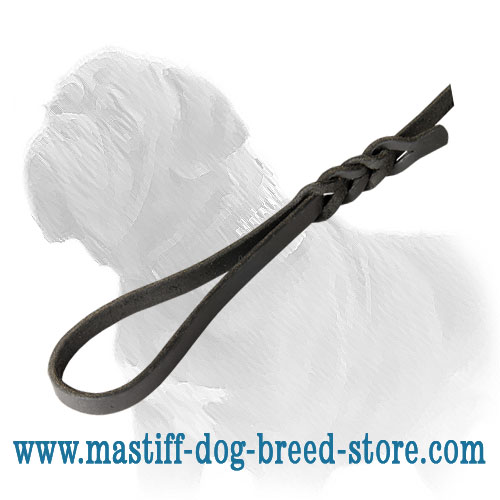 Dog leash for Mastiff breed with solid brass snap hook