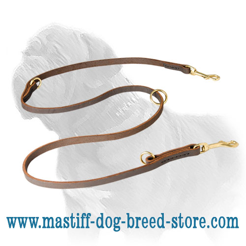Hand-stitched dog leash for Mastiff for different activities