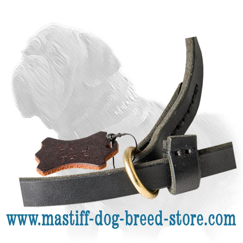 Easily adjustable dog leash for Madtiff with the collar 2-in-1