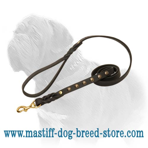 Strong and gorgeous dog leash will perfectly do for Mastiff breed