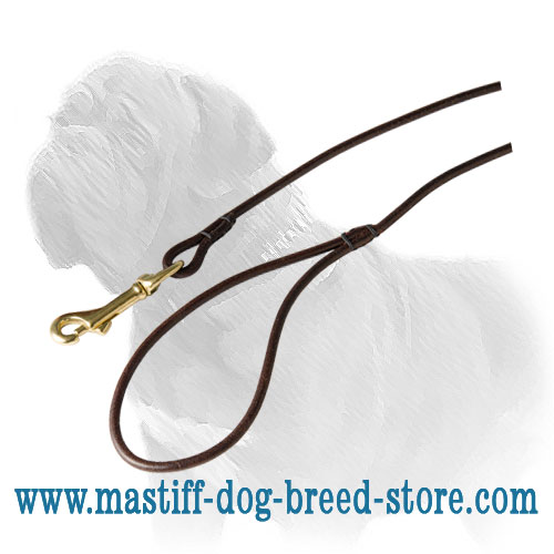 Dog leash for Mastiff shows, full-grain leather