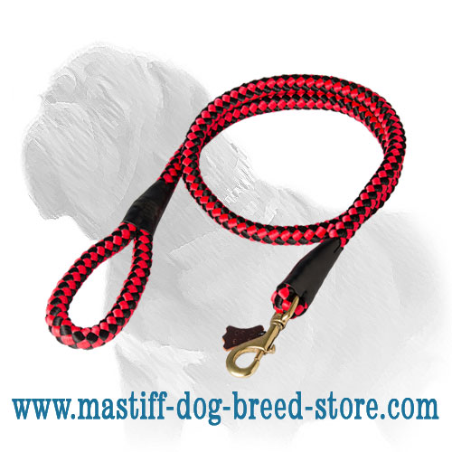 Tracking nylon lead for Mastiff with solid snap hook