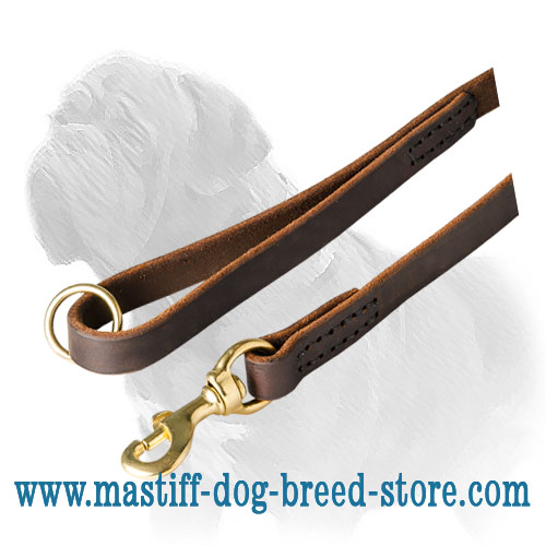 Smooth leather dog leash for Mastiff with brass snap hook