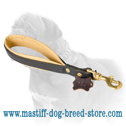Dog leash for Mastiffs with soft handle, contrasting color from inside