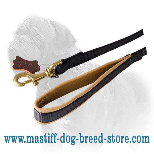 Nylon Mastiff dog leash with leather padding on the handle