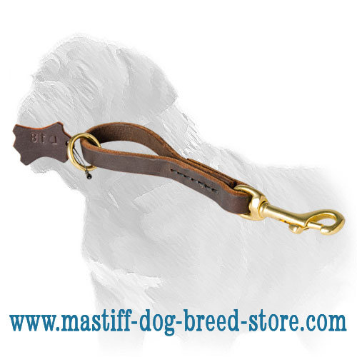 Pull Tab Dog Leash for Mastiff breed with brass floating O-ring