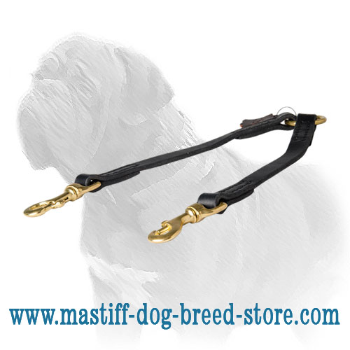 Mastiff leather coupler leash with stitching