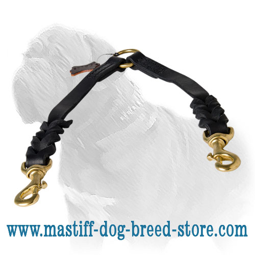 Dog coupler made of leather with brass hardware