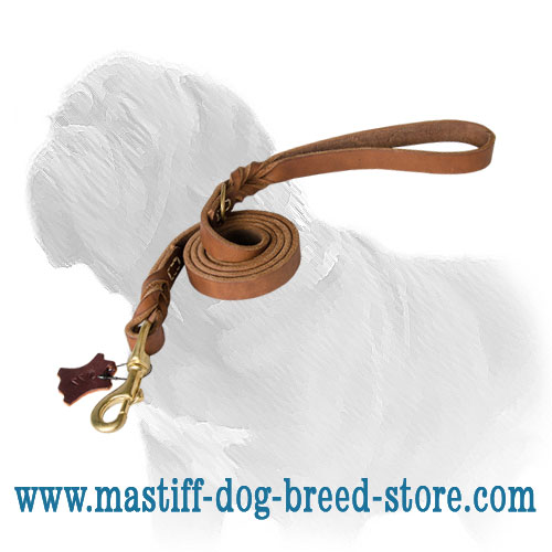 Leather dog leash adorned with elegant braids