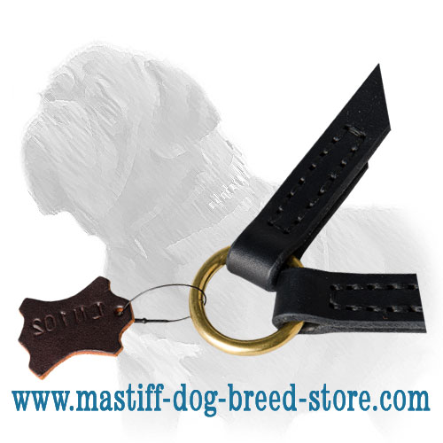 Leather coupler leash with O-ring for the usual lead