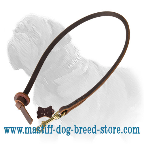 Leather Mastiff leash with circle handle and brass fittings