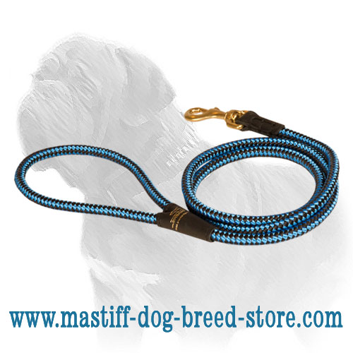 Training nylon lead for Mastiff breed with brass snap hook