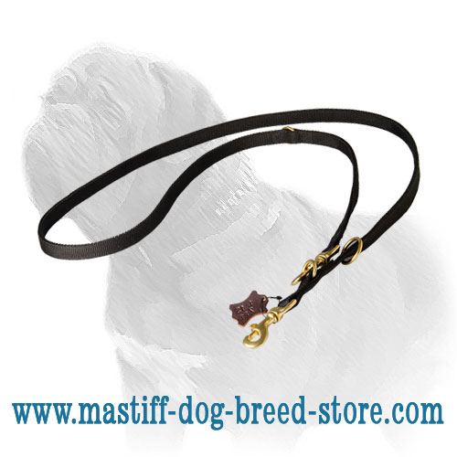 Mastiff nylon dog leash for walks and training in any weather