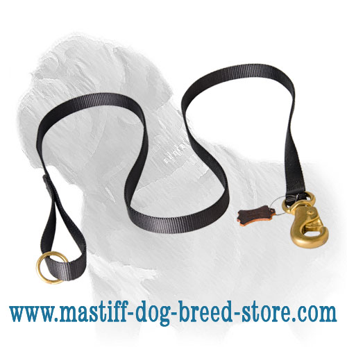 Dog leash of durable 2 ply nylon