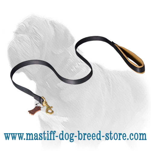 Long nylon Mastiff dog leash for any weather walks