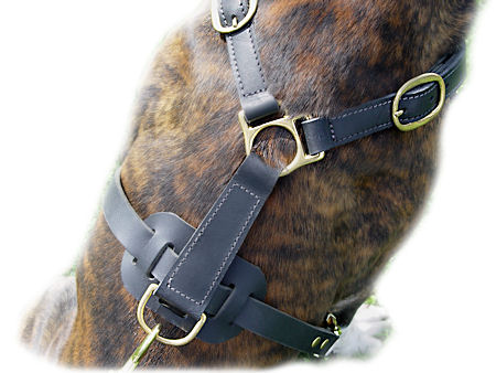Leather No Choke Dog Harness for Mastiff
