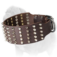 Super Wide Top Quality Mastiff Dog Collar with Spikes and Studs