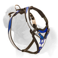 'Holy Land' Pitbull Dog Harness for Walking and Tracking