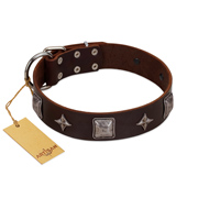 """Cold Star"" Designer FDT Artisan Brown Leather Mastiff Collar with Silver-Like Adornments"
