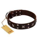 """Bigwig Woof"" FDT Artisan Brown Leather Mastiff Collar with Chrome Plated Stars and Square Studs"