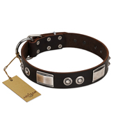 """Baller Status"" FDT Artisan Brown Leather Mastiff Collar Adorned with a Set of Chrome Plated Studs and Plates"