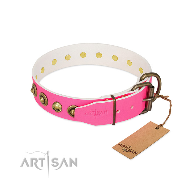 Full grain leather collar with fashionable adornments for your dog