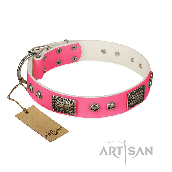 Easy to adjust natural leather dog collar for stylish walking your four-legged friend