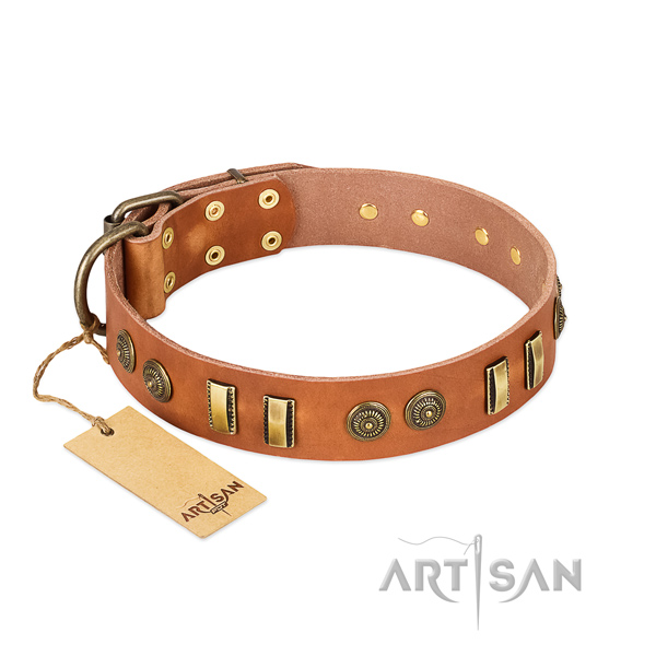 Rust resistant decorations on natural leather dog collar for your canine