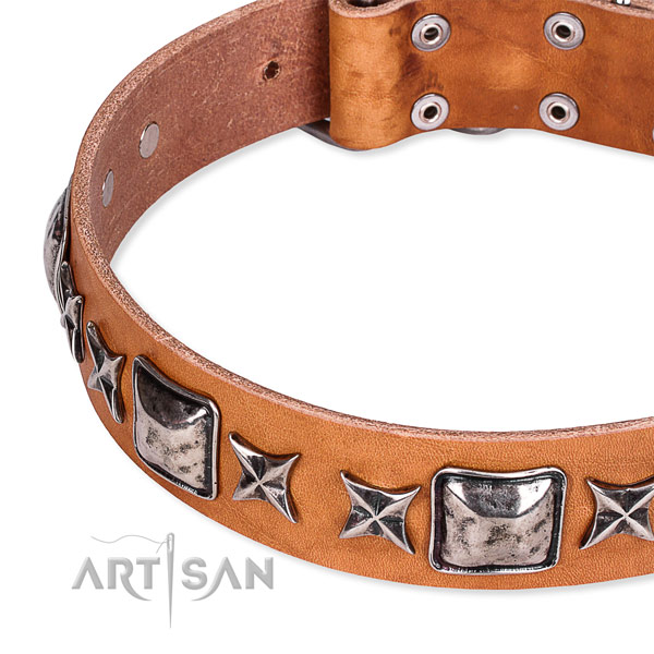 Stylish walking decorated dog collar of best quality full grain genuine leather