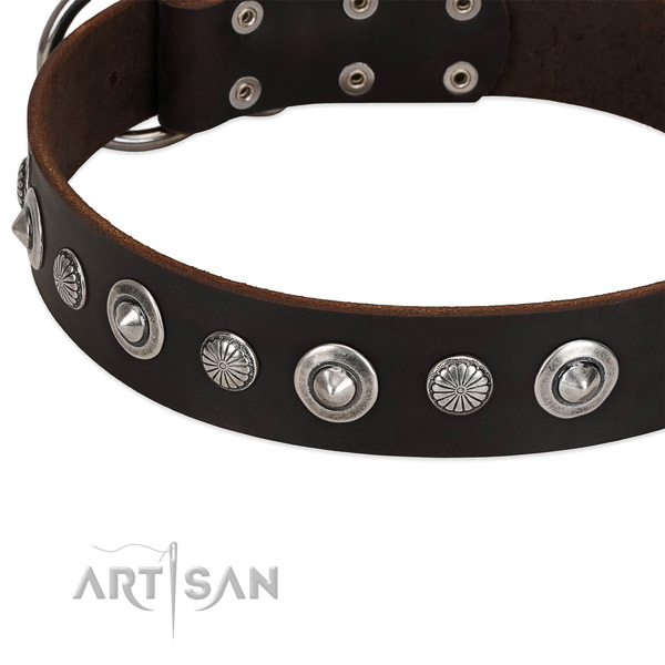 Exceptional embellished dog collar of quality leather